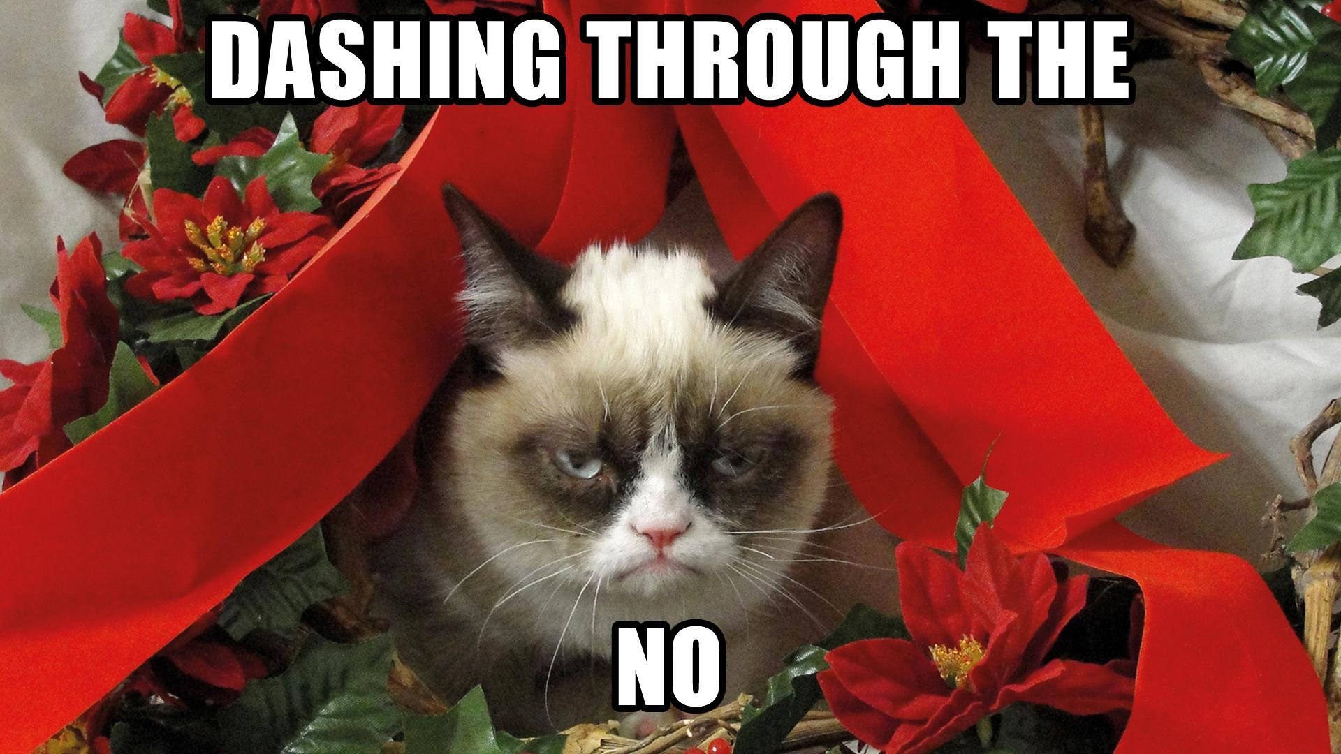 1415094096_grumpy-christmas